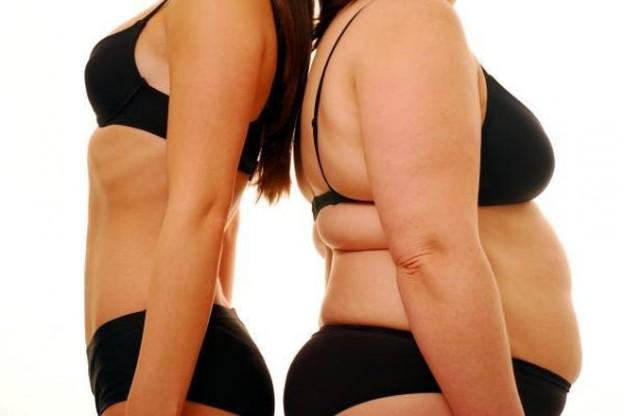 HORMONE FAT 2